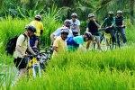 BaliCycling11